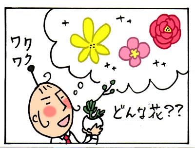 bl01111.jpg