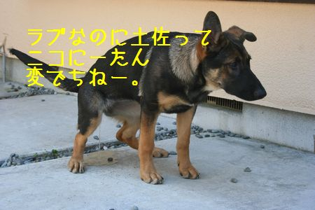 001132005967683.jpg
