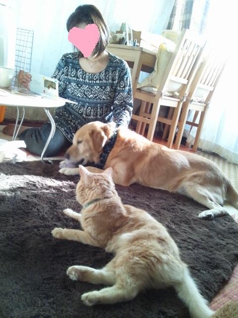 2012 11 7 tajima-san 1