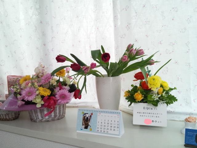 2013 1 6 flowers_1