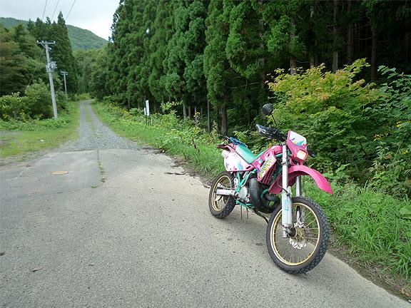 20110826_8.jpg