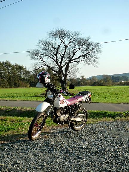 20111027_3.jpg