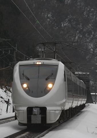 2009122911.jpg