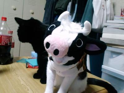 牛ミスター2
