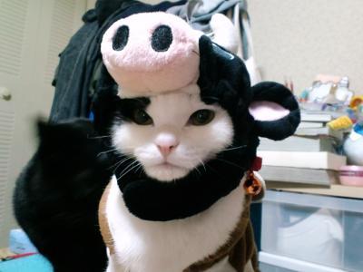 牛ミスター1