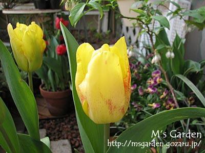 2010-04-11-07.jpg