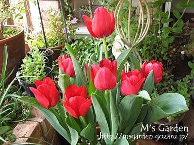 2010-04-11-09.jpg