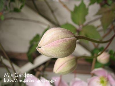 2010-04-20-04.jpg