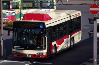 IMGP5267.jpg
