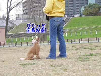 20091115_9.jpg
