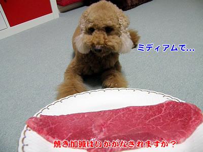 20091123_2.jpg