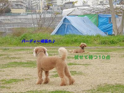 20091209_2.jpg