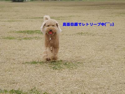 20091209_7.jpg
