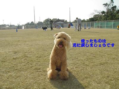 20091224_18.jpg