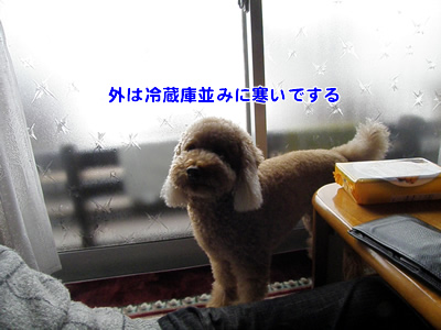 20101004_2.jpg