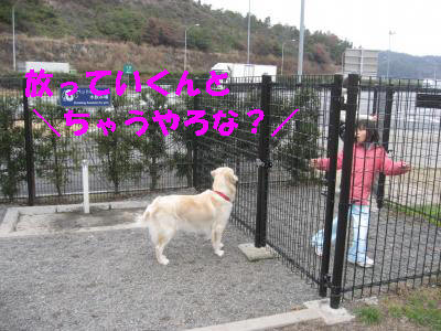 IMG_0304_convert_20100104225221.jpg