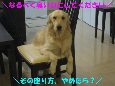 IMG_0376_convert_20100116181408.jpg