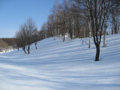 snow0128.jpg