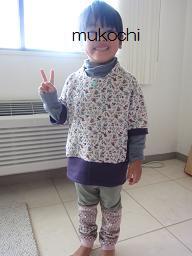 襟付きSO4