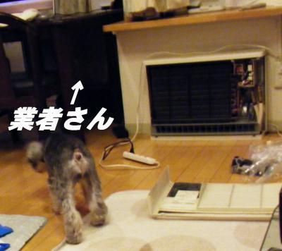001_convert_20101020220902.jpg