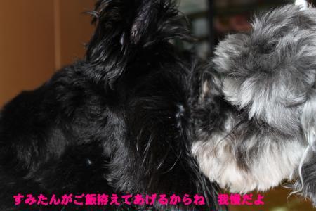 006_convert_20100305211343.jpg