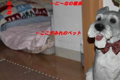 014_convert_20100915163608.jpg