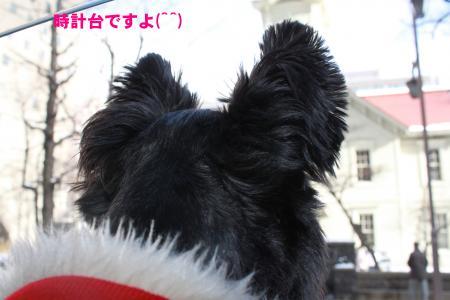 016_convert_20100109220011.jpg