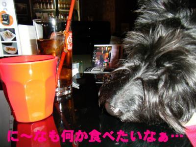 022_convert_20100328145439.jpg