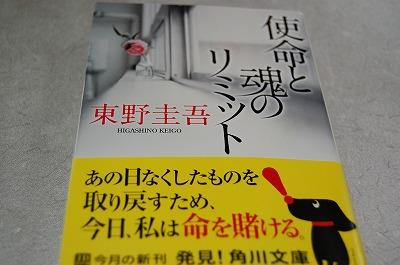 blog_DSC_3194.jpg