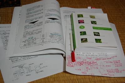 blog_DSC_3514.jpg