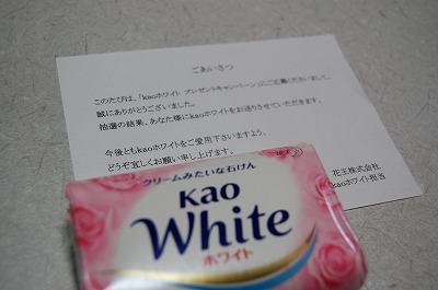 blog_DSC_3863.jpg