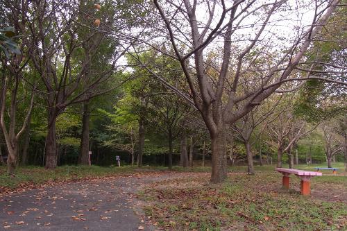 20111013_04.jpg