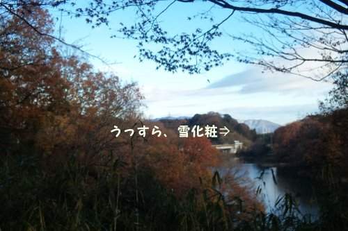 20111217_01.jpg
