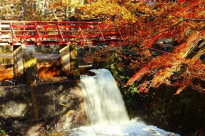 紅葉&水落