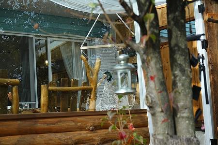 庭cafe 風景