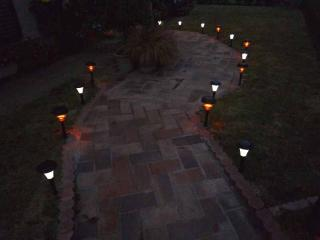tnH21-10-23夜の庭 (5)