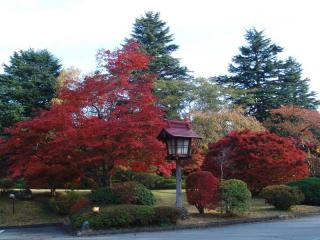 tnH21-10-30富士びゅーの庭 (4)
