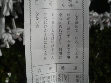 P1000321.jpg