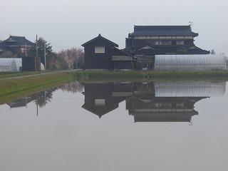 田植え風景 002
