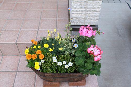 100417花