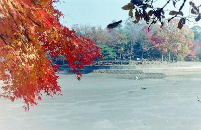 11-29-2010_011.jpg