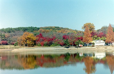 11-29-2010_013.jpg