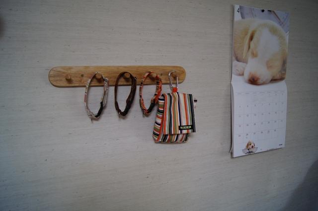 首輪のコレクション