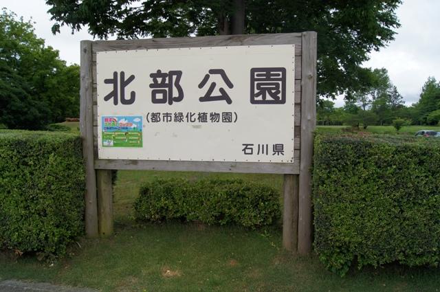北部公園1