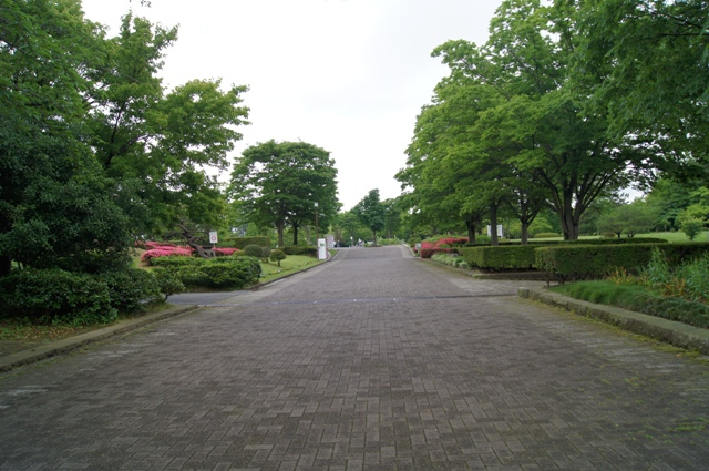 北部公園3