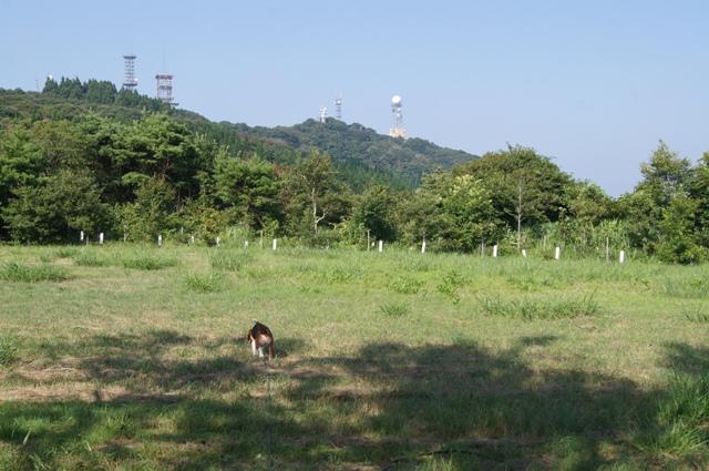 山頂の公園1