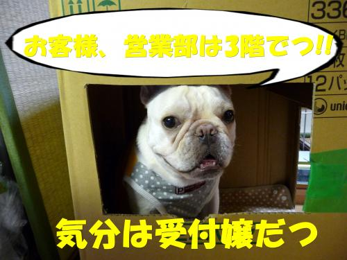 P1070294_convert_20100915195048.jpg