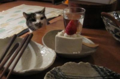 米粉豆乳ケーキ2