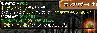 カマキリ110116