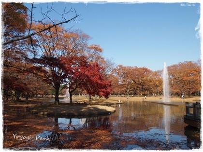 Yoyogi-Park2.jpg